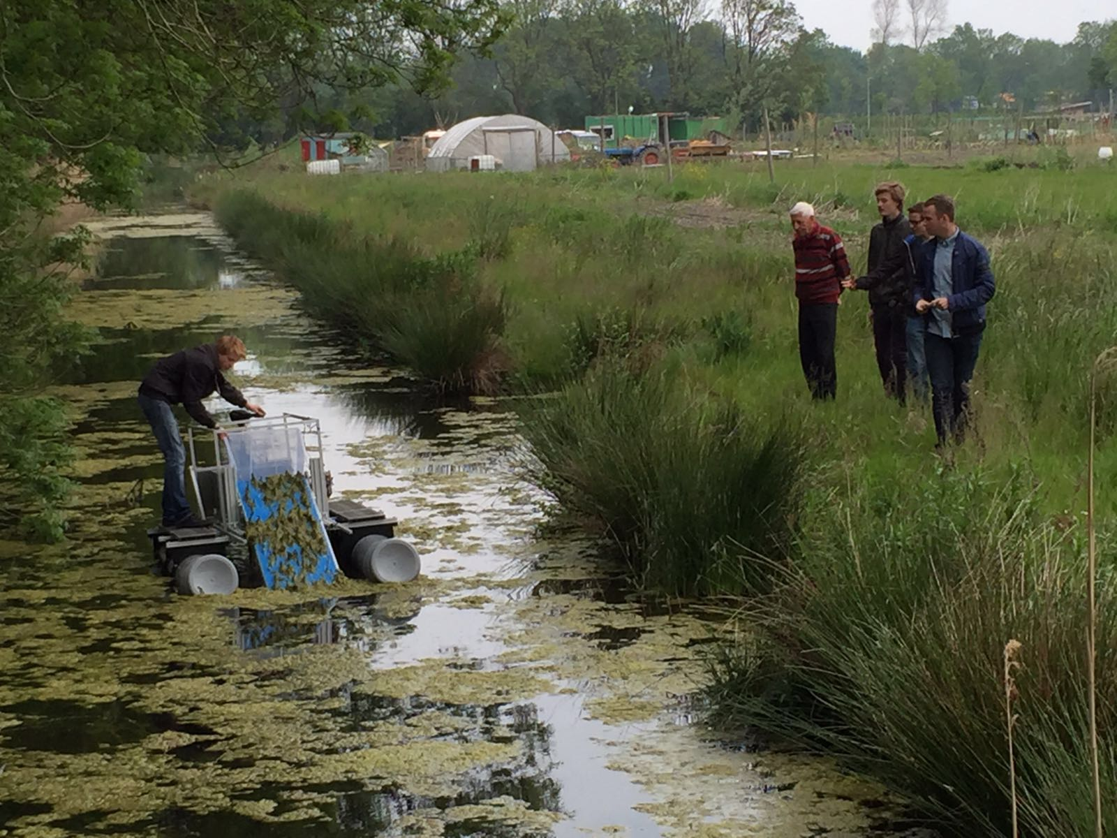 De Tuinen Van West Amsterdam.Primeur Algenboot In Tuinen Van West